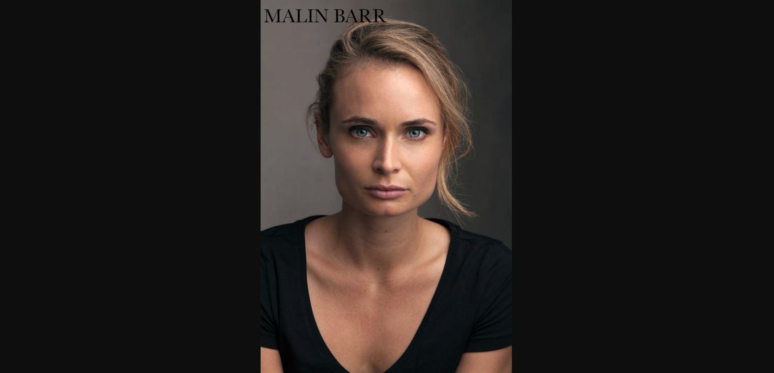 Malin Barr Reel 2017 AVI
